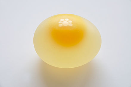 440px-Chicken_Egg_without_Eggshell_5859